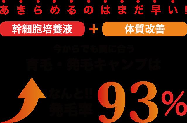 育毛・発毛メニュー